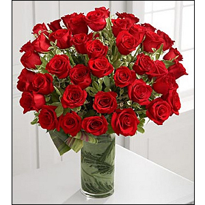 48 Red Roses Arranged